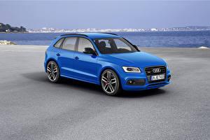 Обои Audi Тюнинг Голубая Металлик 2015 SQ5 TDI plus машина