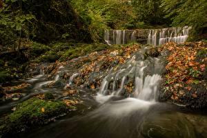 Фото Англия Осень Водопады Листья Lake District, Cumbria Природа