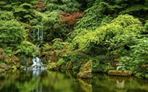 Картинка США Сады HDR Деревья Japanese Gardens, Portland, Oregon Природа