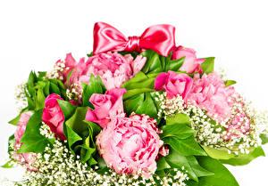 Фото Букеты Розы Пионы Розовый Бантик Белый фон Цветы