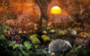Обои Ежики Ежевика Леса Солнце Животные