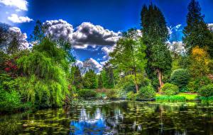 Картинка Англия Парки Пруд Деревья Кусты Облака HDRI Tatton Hall Природа