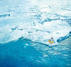 Картинки Холодное сердце Лед Снеговик Walt Disney 2013 Arendelle Olaf Мультфильмы