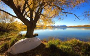 Фотографии Осенние Озеро Лодки Деревьев Природа
