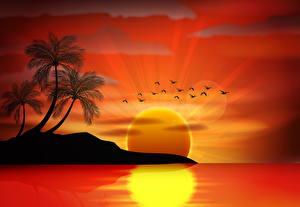 Фото Море Векторная графика Пальмы Солнце Силуэт Природа