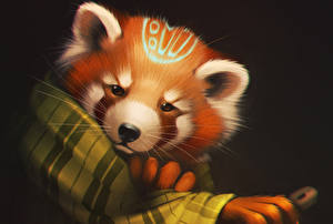 Фото Малая панда Рисованные Медведи