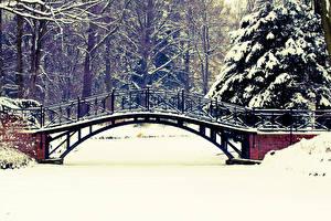 Фотография Зимние Мосты Парки Снегу Природа