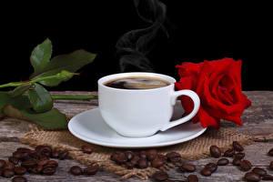 Фотографии Кофе Розы Зерна Продукты питания Цветы