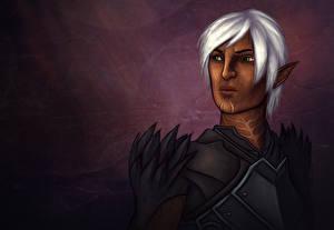 Картинки Dragon Age Эльфы Воители Fenris Игры Фэнтези