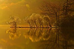 Фото Озеро Осень Природа