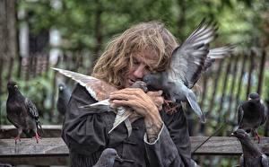 Картинка Голубь Птица Мужчины Нью-Йорк животное