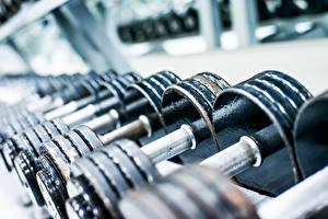 Картинки Вблизи Гантели dumbbells gym metal Спорт