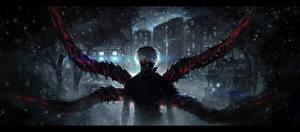 Обои Tokyo Ghoul Аниме