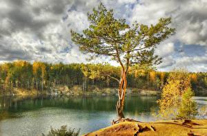 Фото Озеро Осень Дерево Природа