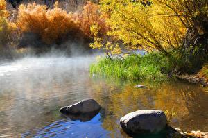 Фотография Озеро Камень Осенние Туман Природа