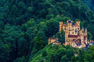 Фотографии Германия Замки Бавария Hohenschwangau Castle город