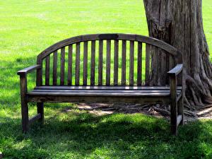 Картинка Лето Скамейка Траве Ствол дерева Природа