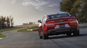 Картинка Chevrolet Дороги Красная Сзади 2015 Camaro SS машины