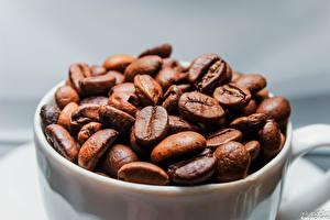 Обои Кофе Крупным планом Зерна Еда