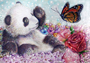 Картинки Медведи Панды Рисованные Бабочки Животные