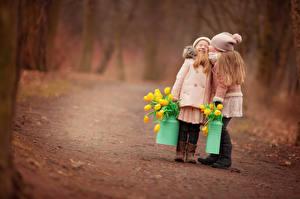 Картинка Леса Дороги Девочки Двое Дети