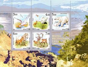 Фотография Россия Олени Медведи Лошади Чайка Почтовая марка The fauna of the Republic of Sakha (Yakutia) Животные