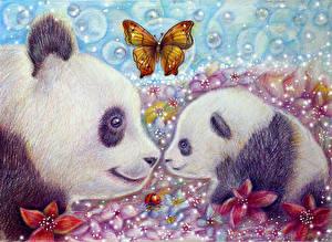 Фотографии Медведи Бамбуковый медведь Рисованные Бабочки Двое животное