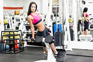 Фотографии Фитнес Зеркал Спортзал gym look exercise machine спортивные Девушки