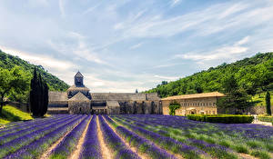 Картинка Франция Лаванда Небо Поля Прованс HDRI Sénanque Abbey Природа