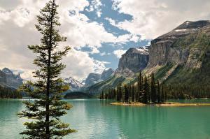 Картинка Канада Озеро Горы Пейзаж Деревья Облака Джаспер парк Maligne Lake