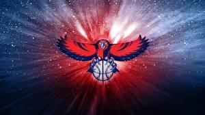 Обои Птицы Ястреб Баскетбол Мяч Atlanta Hawks NBA спортивный