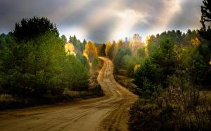 Обои Лето Дороги Лучи света Природа