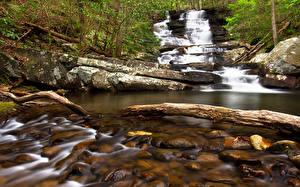 Обои Грузия Водопады Речка Камень Emery Creek Trail Chatsworth Природа
