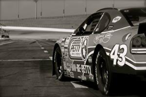 Фотографии Chevrolet Дороги Nascar автомобиль