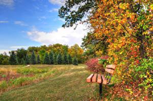 Картинки Парк Осенние Небо Скамейка Природа