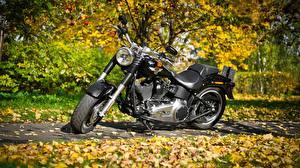 Обои Harley-Davidson Осень Черный Листва metal