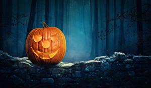 Фотография Хэллоуин Тыква Лес Halloween Pumpkin Еда