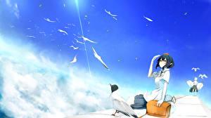 Картинки Touhou Collection Птицы Небо Облака yugeoryouki shameimaru aya inubashiri momiji Девушки