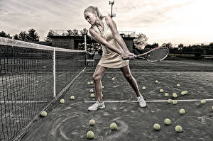 Фотографии Теннис Мяч Спортивная сетка Спорт Девушки