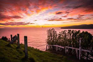 Фотография Берег Рассветы и закаты Облака Природа