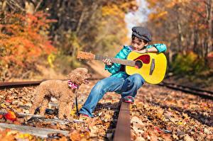 Картинка Собаки Осень Железные дороги Гитара Пудель Мальчики Рельсы Дети Животные