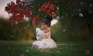 Обои Азиаты Девочки На ветке Траве Платье Брюнеток Дети