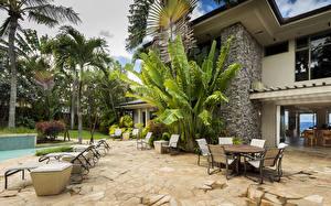 Картинки Дома Америка Гавайи Пальма maui город