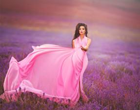 Обои Поля Лаванда Шатенка Платья Розовые Девушки Природа