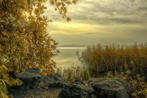 Фото Россия Осенние Реки Кустов Ural Природа