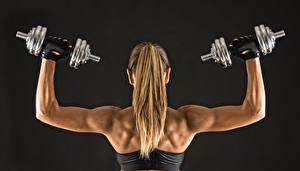 Картинки Фитнес Гантели Волосы Спина dumbbells fitness sportswear muscular back Спорт Девушки