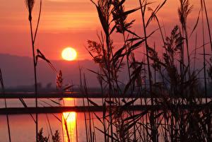 Фото Горы Реки Рассветы и закаты Солнце Трава Природа