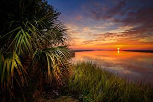 Фотографии Пейзаж Рассветы и закаты Речка Небо Трава Облака Природа