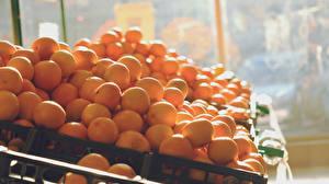 Фотографии Апельсин Фрукты Много Оранжевая Продукты питания