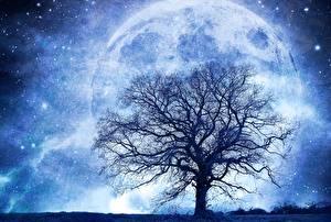 Картинка Планеты Звезды Дерево Силуэт Ветки Фантастика Космос